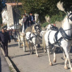 funerale cavalli