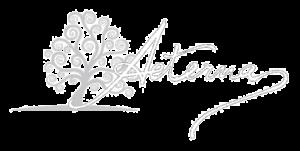 logo aeterna pompe funebri